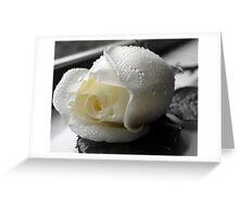 Windowsill Rose Greeting Card