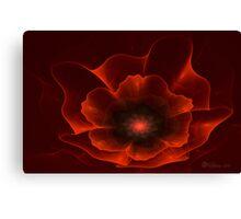 Apo Oriental Poppy Canvas Print