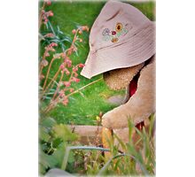 A spot of light gardening Photographic Print