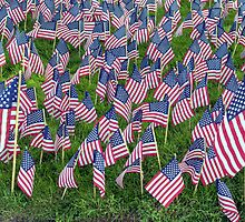 Memorial Day 2011- in close up by henuly1