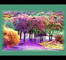 'Fairy Forrest' by JadeAsh