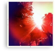 infrared day Canvas Print