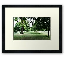 """Look deep into nature and then you will understand everything better.""  Albert Einstein Framed Print"