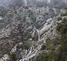 San Antonio Falls by Troy Gooch