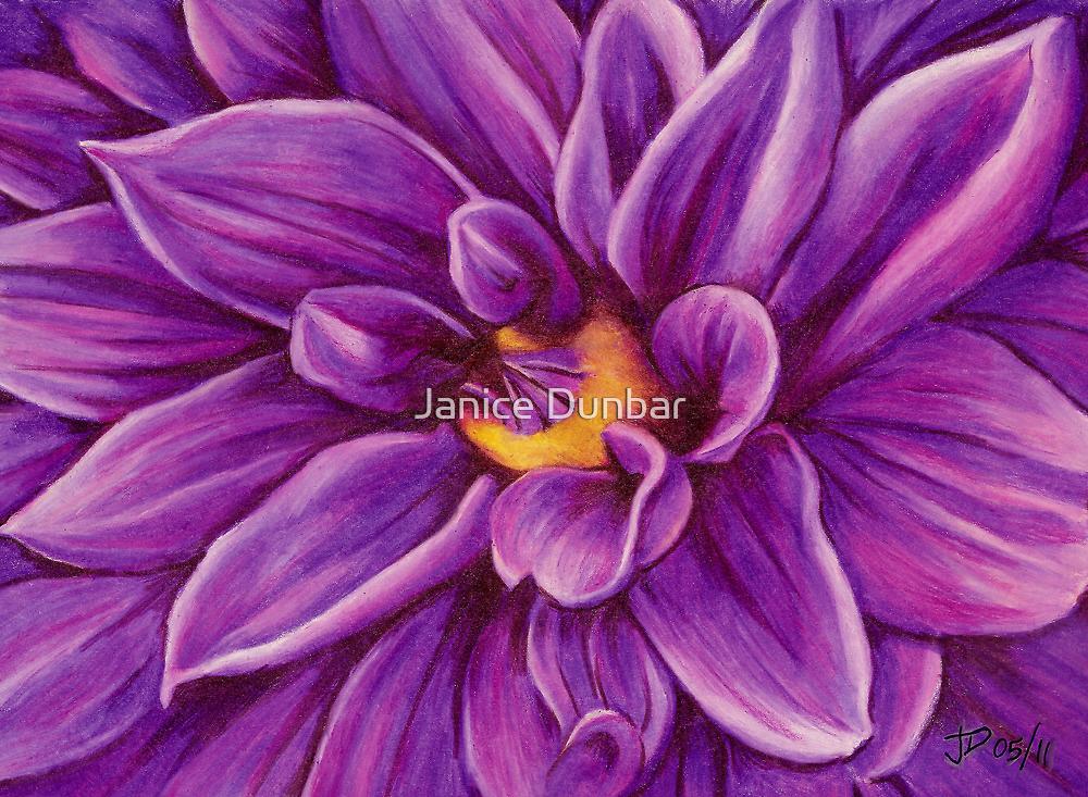 Pencil Dahlia by Janice Dunbar