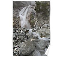 Water Rushes By Poster