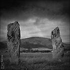 Two Stones by synergymono