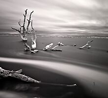 Infrared Lake Bonney by Glen  Cooper