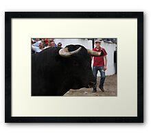 Largada de touros 7482 Framed Print