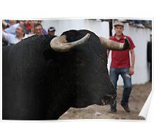 Largada de touros 7482 Poster