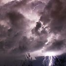 Natures Power by Kane  Hardie