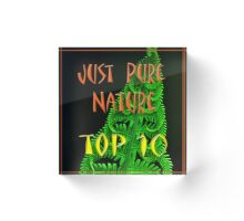 Just Pure Nature Top Ten Banner Acrylic Block