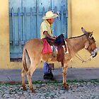 Man and a Donkey by Lynn Bolt
