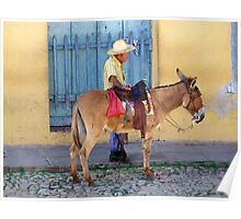 Man and a Donkey Poster