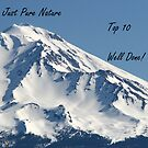 Just Pure Nature Top 10 Banner by Lorrie Davis
