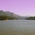 Mattupetty Lake, Munnar by Dhruba Tamuli