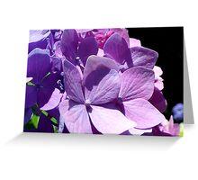 Chameleon of Flowers Greeting Card