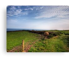 "An ""Alderney Stone"" - Andy Goldsworthy Canvas Print"