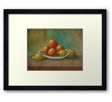 Still Life Study no-6 Framed Print