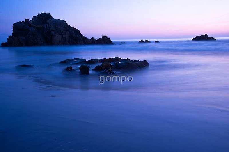 insight by gompo
