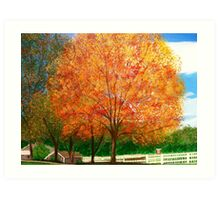 Sweet sugar Maple/painted Art Print