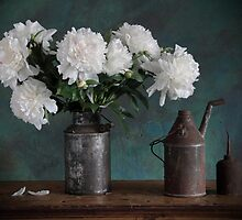 white peony by danapace