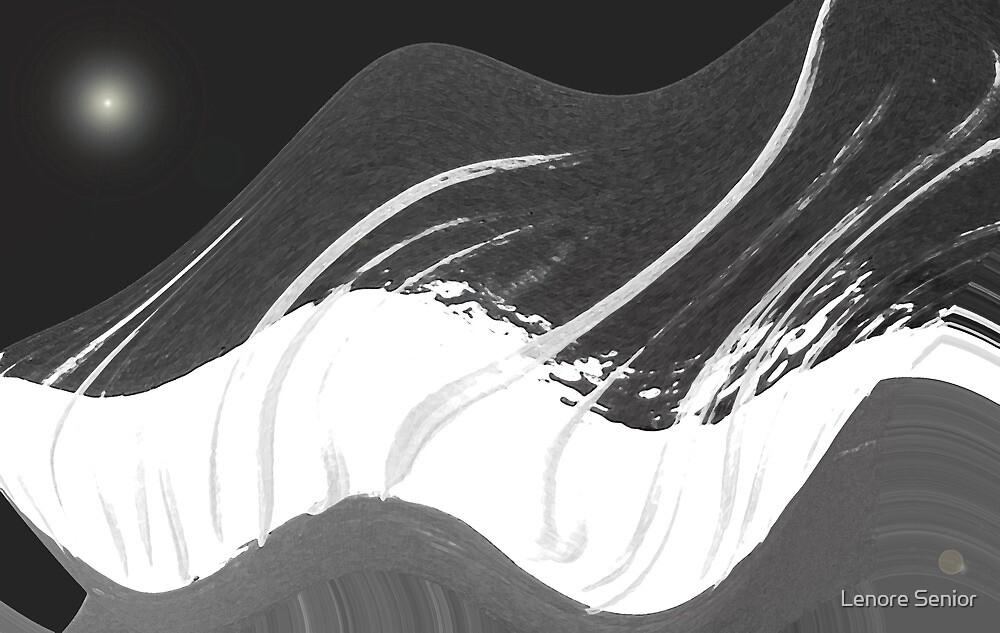 Poetry in Black & White by Lenore Senior