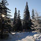 Zakopane, Poland by Dhruba Tamuli