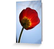 Fuzzy Tulip Greeting Card