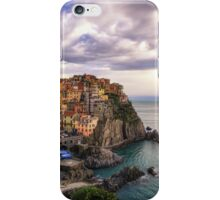 A flower for manarola iPhone Case/Skin