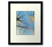 a look up Framed Print
