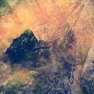 entering the faerie realm by Rachel  McKinnie