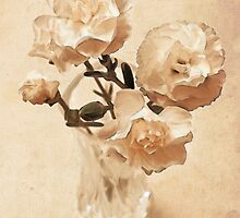 Carnations on White by Sherie LaPrade
