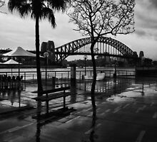 Sydney Rain by David Petranker