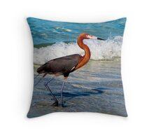 Adult Reddish Egret Throw Pillow