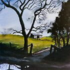 Reflection in the Country by Jim Parker
