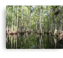 Wetlands Canvas Print