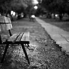 bench in park by waitin&#x27; for rain