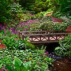 Spring Bridge - Bainbridge Island, WA by Mark Heller