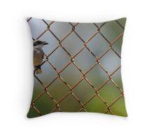 Loggerhead Shrike in the Fence Throw Pillow
