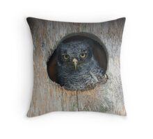 Eastern Screech Owlet Throw Pillow