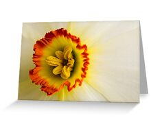 Daffodil crown Greeting Card