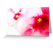 Purple Buttercup Greeting Card
