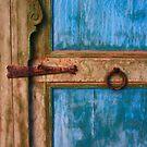 Rustic Old Blue Moroccan Door by Haggiswonderdog