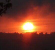 golden columbia river sunrise 3 by Dawna Morton