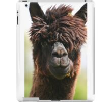 Alpaca iPad Case/Skin
