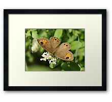 Large Wall Brown Framed Print