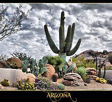Cactus-Arizona by Yasmin Simpson