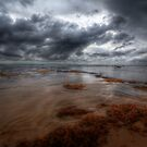 Early light over Bateau Bay by John Morton