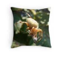 Spider's Lunch: You Are Done Throw Pillow